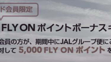 JAL 2021年向けFOPキャンペーン特別対応まとめ。JGC修行するなら絶対に抑えておけ